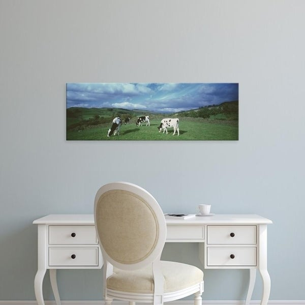 Easy Art Prints Panoramic Images's 'Cows grazing in a field, Lake District, England, United Kingdom' Premium Canvas Art