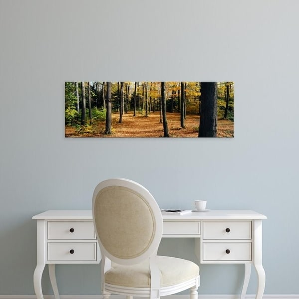 Easy Art Prints Panoramic Images's 'Chestnut Ridge Park Orchard Park NY USA' Premium Canvas Art