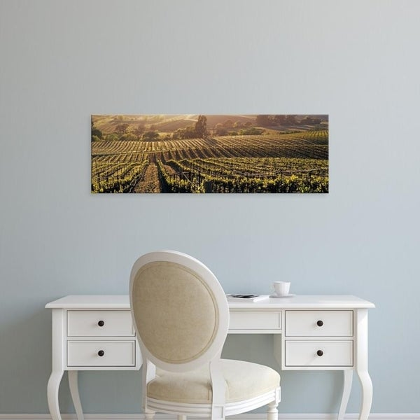 Easy Art Prints Panoramic Images's 'Aerial View Of Rows Crop In A Vineyard, Careros Valley, California, USA' Premium Canvas Art