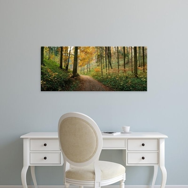 Easy Art Prints Panoramic Images's 'Road passing through a forest, Baden-Wurttemberg, Germany' Premium Canvas Art