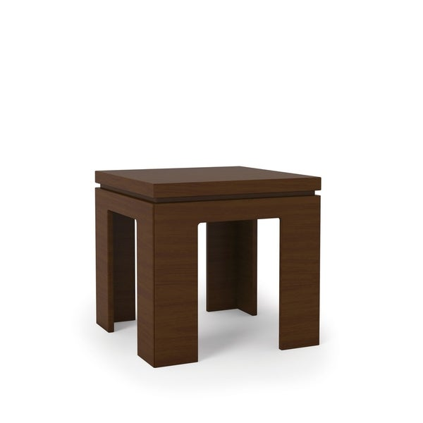 """HomeRoots Furniture 1.0 - 21"""" Square Length Modern Nut Brown Accent End Table"""