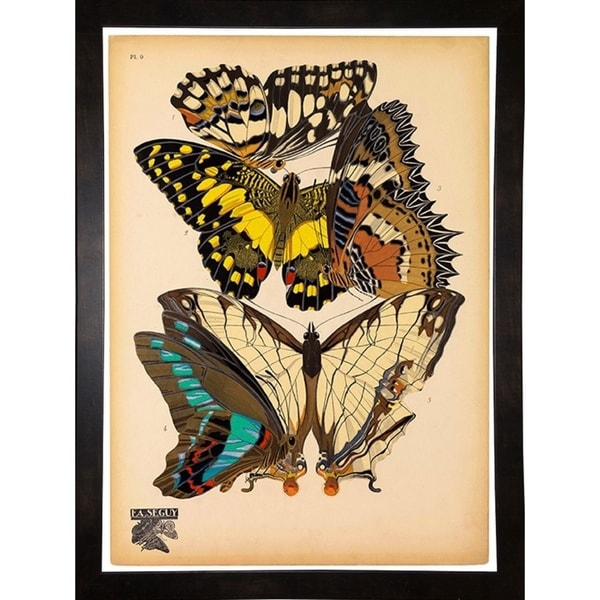 "Butterflies Plate 14, E.A. Seguy-PRIPUB130824 Print 10""x7.25"" by Print Collection"