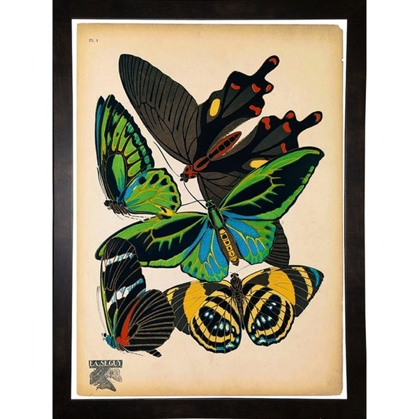 "Butterflies Plate 1, E.A. Seguy-PRIPUB130819 Print 9.75""x7.25"" by Print Collection"
