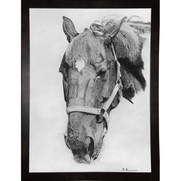 """Big Red-RUSFRE1129 Print 34""""x25.25"""" by Rusty Frentner"""