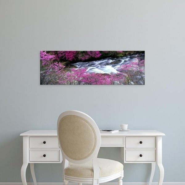 Easy Art Prints Panoramic Images's 'Ryuzu Falls Tochigi Japan' Premium Canvas Art