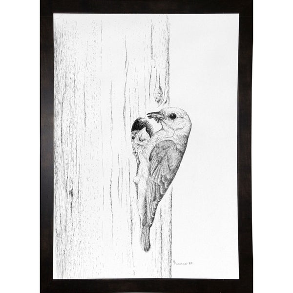 "Bluebird Study-RUSFRE1073 Print 42.5""x29.75"" by Rusty Frentner"