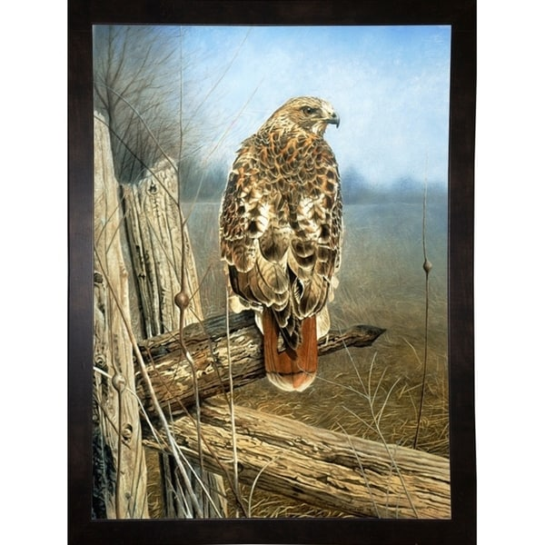 """Red Tailed Hawk-RUSFRE62927 Print 41.75""""x30.5"""" by Rusty Frentner"""