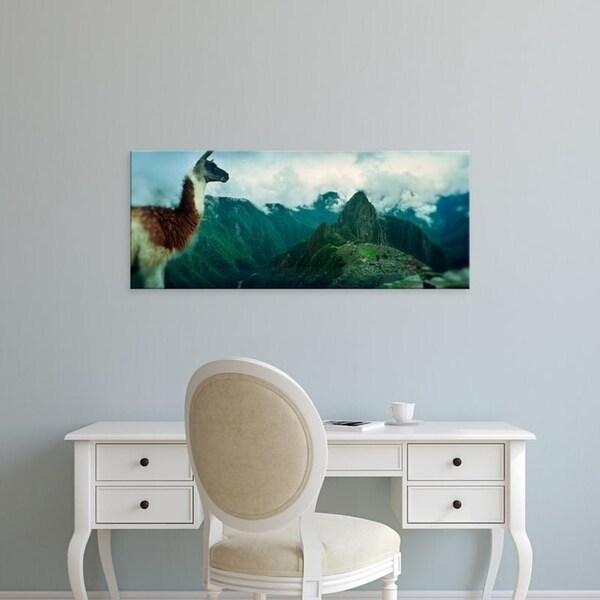 Easy Art Prints Panoramic Images's 'Alpaca, Archaeological site, Inca Ruins, Machu Picchu, Cusco Region, Peru' Canvas Art