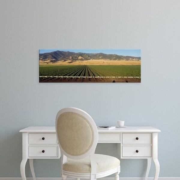 Easy Art Prints Panoramic Images's 'Bean Field Salinas Valley CA' Premium Canvas Art