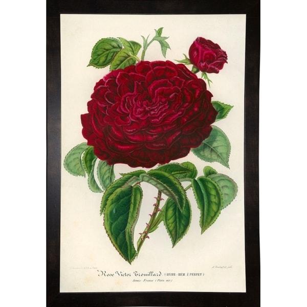 "Rose Victor Trouillard-PRIPUB130895 Print 25.5""x17"" by Print Collection"