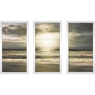 """Sun's Grace"" by Mike Calascibetta Print on Acrylic Set of 3 - gray"