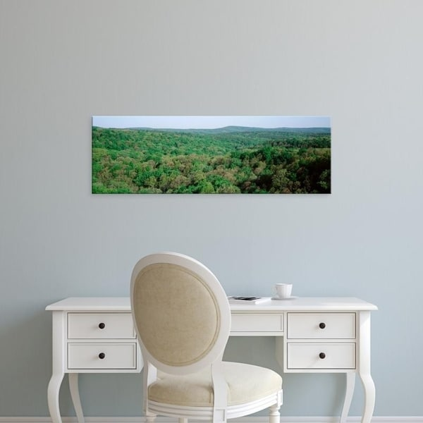 Easy Art Prints Panoramic Images's 'Trees, Garden of the Gods Wilderness, Shawnee National Forest, Illinois' Canvas Art