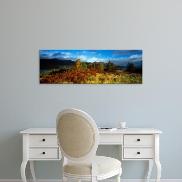 Easy Art Prints Panoramic Images's 'Trees in a field, Loch Tay, Scotland' Premium Canvas Art