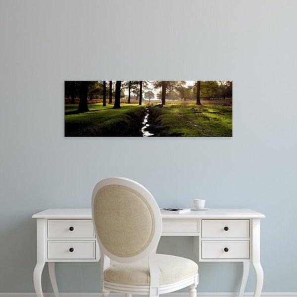 Easy Art Prints Panoramic Images's 'Stream passing through a park, Richmond Park, London, England' Premium Canvas Art