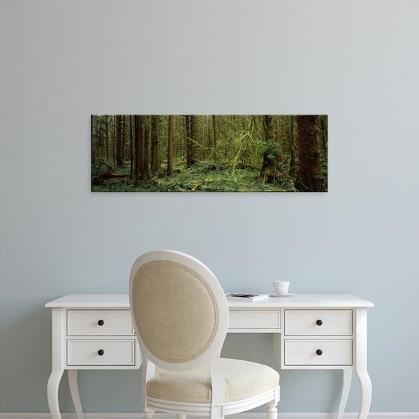 Easy Art Prints Panoramic Images's 'Trees in a forest, Hoh Rainforest, Olympic Peninsula, Washington State' Premium Canvas Art
