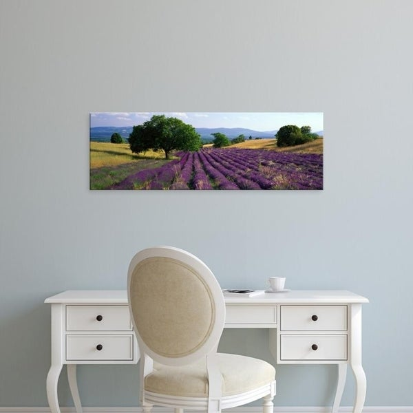 Easy Art Prints Panoramic Images's 'Flowers In Field, Lavender Field, La Drome Provence, France' Premium Canvas Art