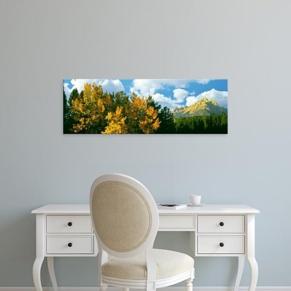 Easy Art Prints Panoramic Images's 'Aspen grove with mountains, Teton Range, Grand Teton National Park, Wyoming' Canvas Art