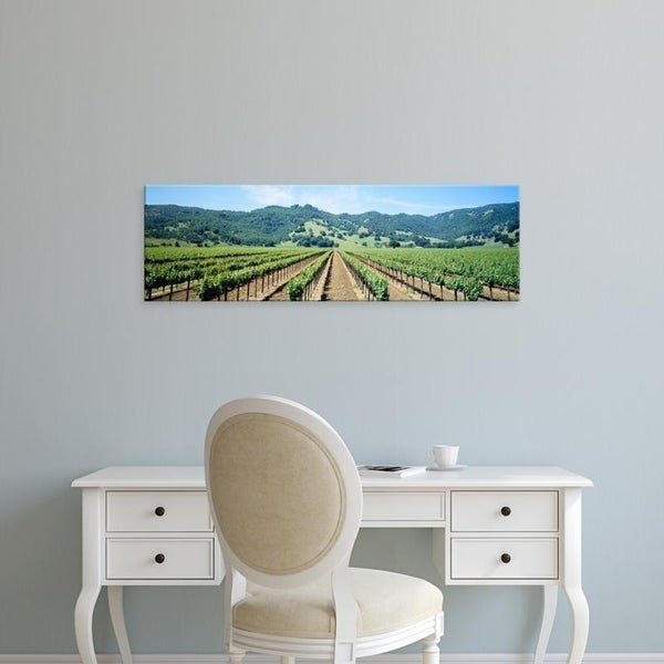 Easy Art Prints Panoramic Images's 'Napa Valley Vineyards Hopland, CA' Premium Canvas Art