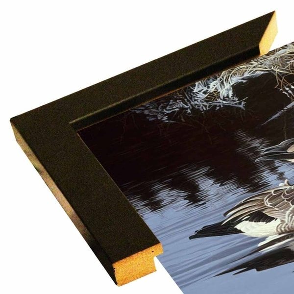 """Spring Arrivals- Canada Geese-RONPAR10491 Print 24.5""""x45"""" by Ron Parker"""