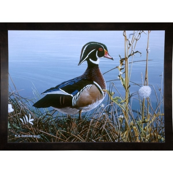 "Duck At Waters Edge-RONPAR10465 Print 16""x22.25"" by Ron Parker"