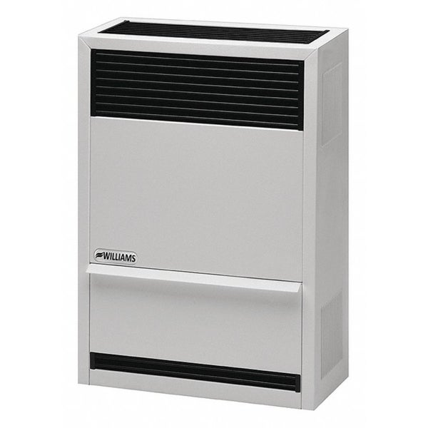 Shop 30 000 Btu Gas Direct Vent Wall Furnace Lp 66