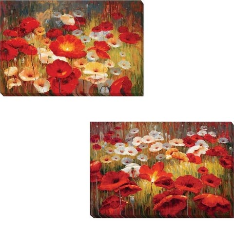 Meadow Poppies I & II by Lucas Santini 2-piece Gallery Wrapped Canvas Giclee Art Set (12 in x 18 in Each Giclee in Set)