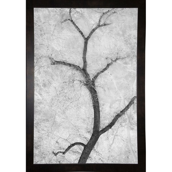 Shop Cottonwood Form B&W-THOHAN126862 Print 19 25