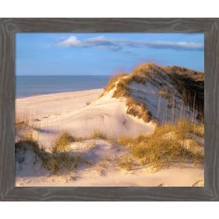Canvas Art Framed 'Coastal sand dunes, Saint Joseph Peninsula, Florida' by Tim Fitzharris: Outer Size 25 x 21-inch