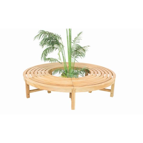 Admirable Shop Natural Teak Backless Curved Tree Bench On Sale Ncnpc Chair Design For Home Ncnpcorg