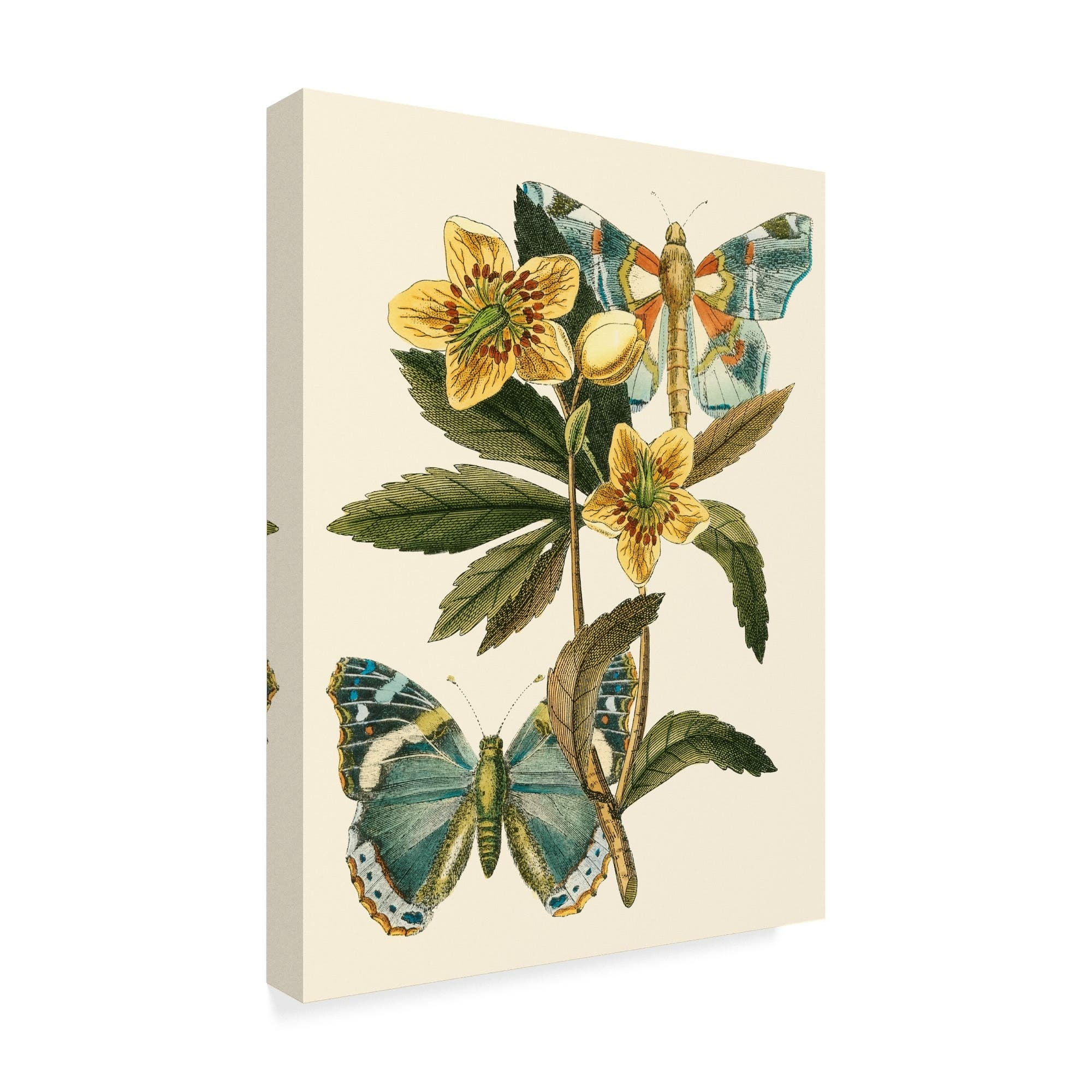 Buy Gallery Wrapped Canvas Online At Overstock Com Our