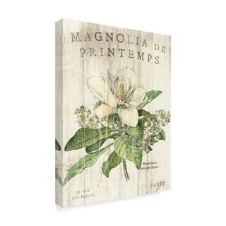 Sue Schlabach 'Magnolia De Printemps' Canvas Art
