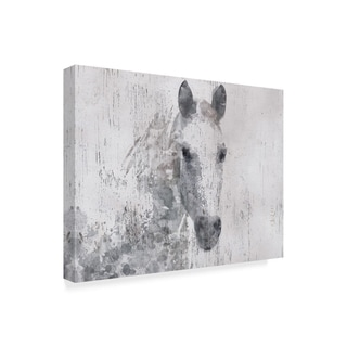 Irena Orlov 'Dapple Horse I' Canvas Art