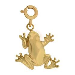 14k Yellow Gold Frog Charm|https://ak1.ostkcdn.com/images/products/2449297/14k-Yellow-Gold-Frog-Charm-P10677814a.jpg?impolicy=medium