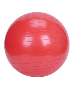 Shop Exercise Ball 55cm Free Shipping On Orders Over