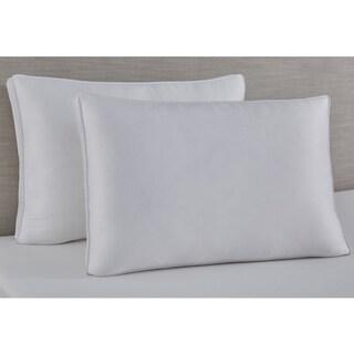 Slumber Solutions Ebonite and Memory Fiber Pillow