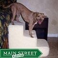 PetStairz Big Dog 3-step Pet Stairs