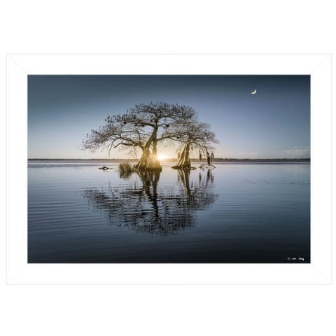 """""""Tree Reflections"""" by Moises Levy, Ready to Hang Framed Print, White Frame"""