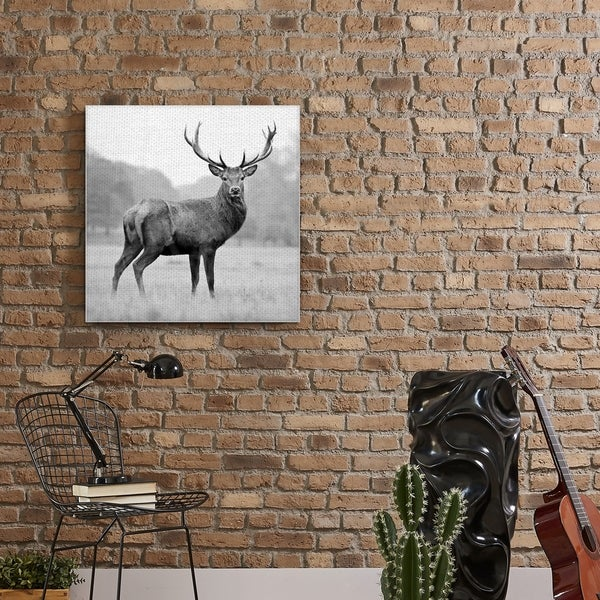 Proud Deer Canvas wall Art prints high quality great value