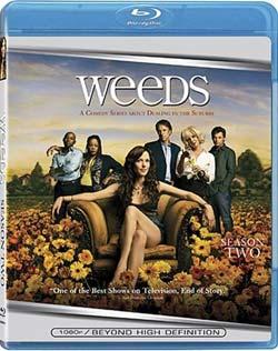 Weeds: Season 2 (Blu-ray Disc)