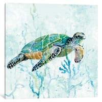 iCanvas ''Sea Turtle Swim I'' by Carol Robinson