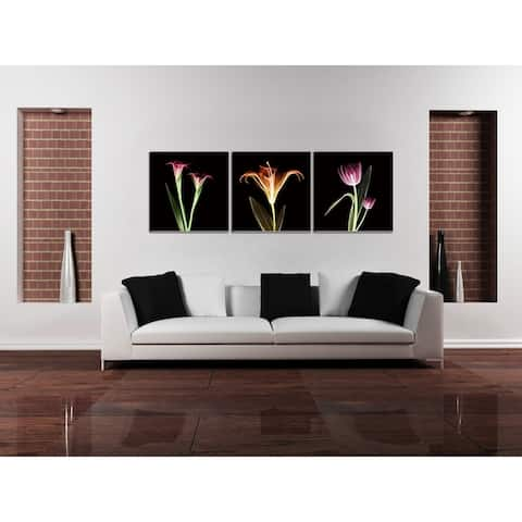 Chic Home Tropical 3 Piece Set Wrapped Canvas Wall Art Giclee Print - Multi-color