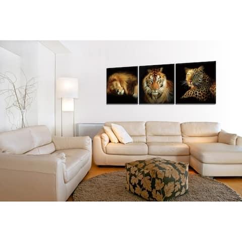 Chic Home Wild Safari 3 Piece Set Wrapped Canvas Wall Art - Multi-color