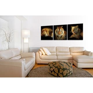 Chic Home Wild Safari 3 Piece Set Wrapped Canvas Wall Art - Multi-color