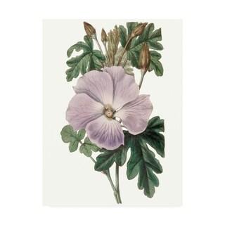 Edwards 'Lavender Beauties I' Canvas Art