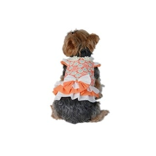 Anima Orange Floral Dress with Ribbon for Puppy Dogs (Size XXS-L)