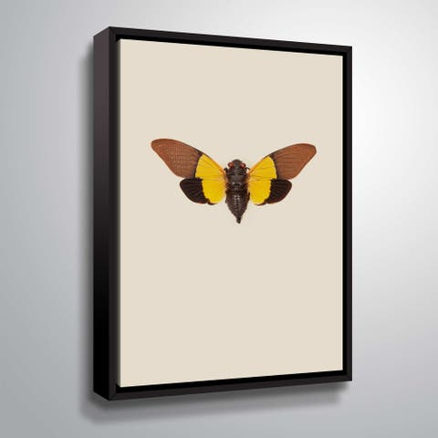 ArtWall 'Cicada' Gallery Wrapped Floater-framed Canvas