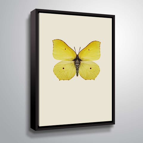ArtWall 'Gonepteryx rhamni' Gallery Wrapped Floater-framed Canvas