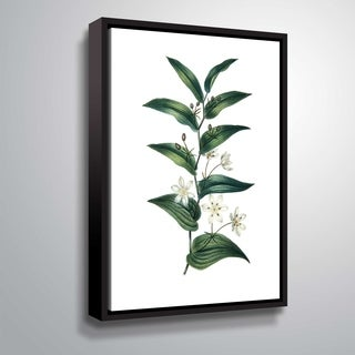 ArtWall 'Botanica I' Gallery Wrapped Floater-framed Canvas