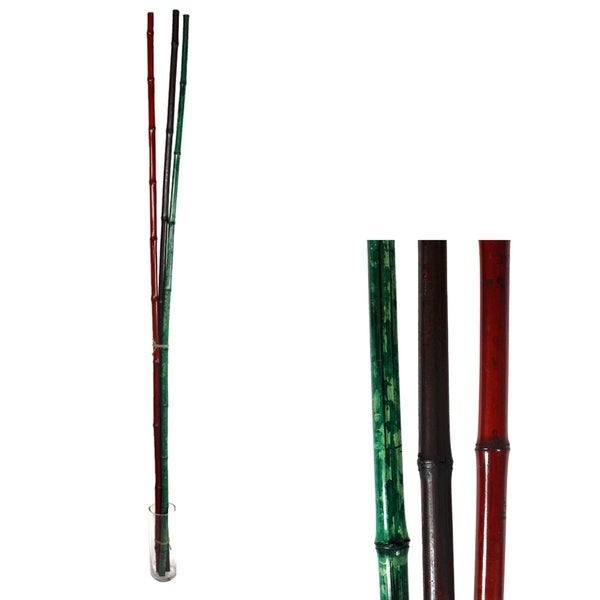 Essential Decor & Beyond 3pc. Floor Bamboo Tree GL75283 - Green/Red - 72 x 3.5 x 3.5