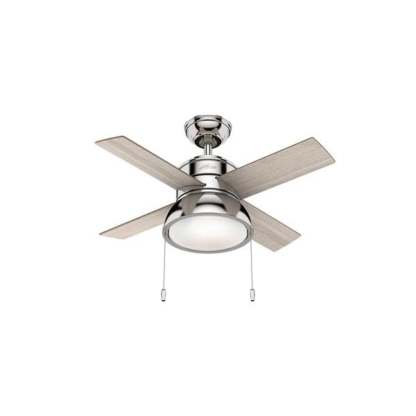 Shop Hunter Fan 36